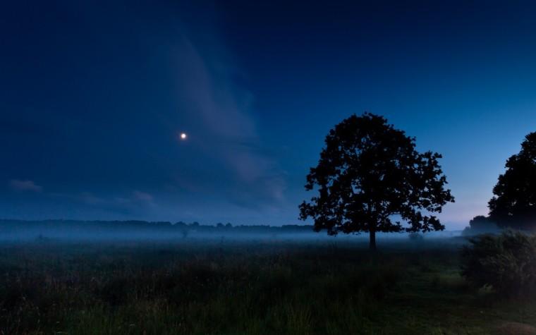 silent-night-mist-1686046-1280x800